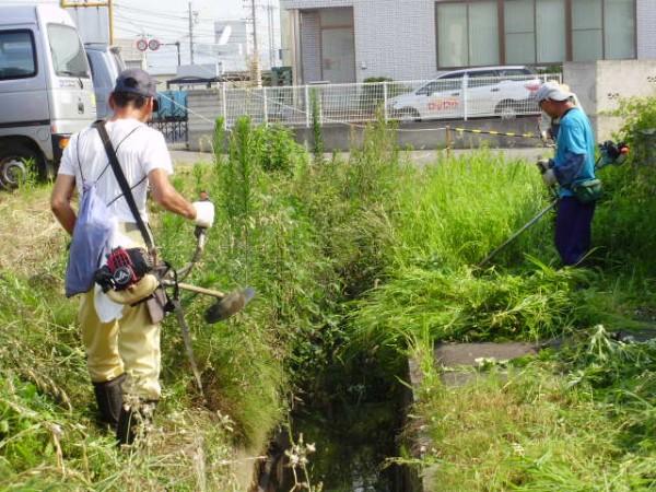 用水の草刈り②