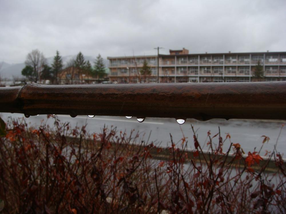 雨の中 柳原小学校