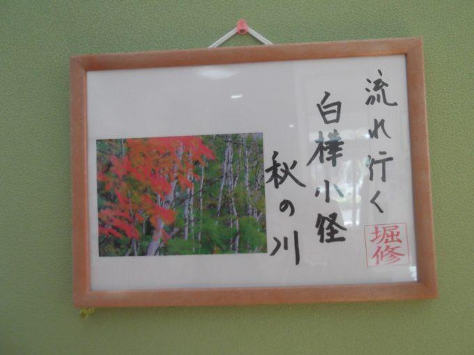 Hさんの作品が飾られていました。写真も句もすばらしいです!
