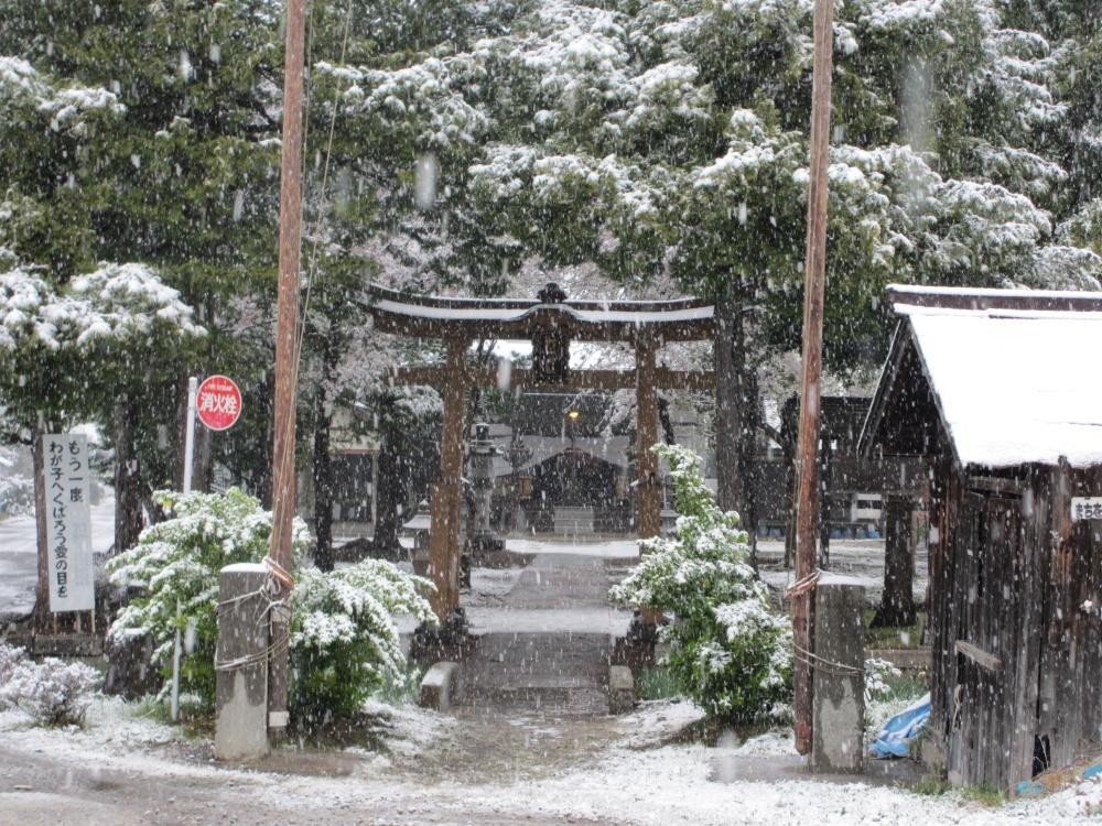 雪が降る村山神社 4月とは思えない