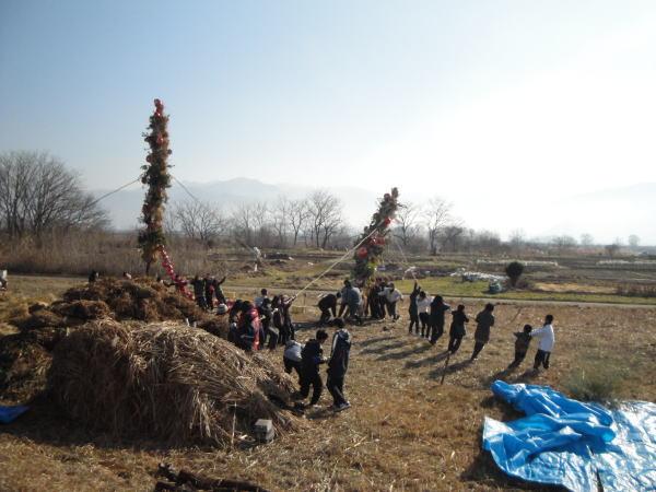 布野区では、ご神木を二本建てます