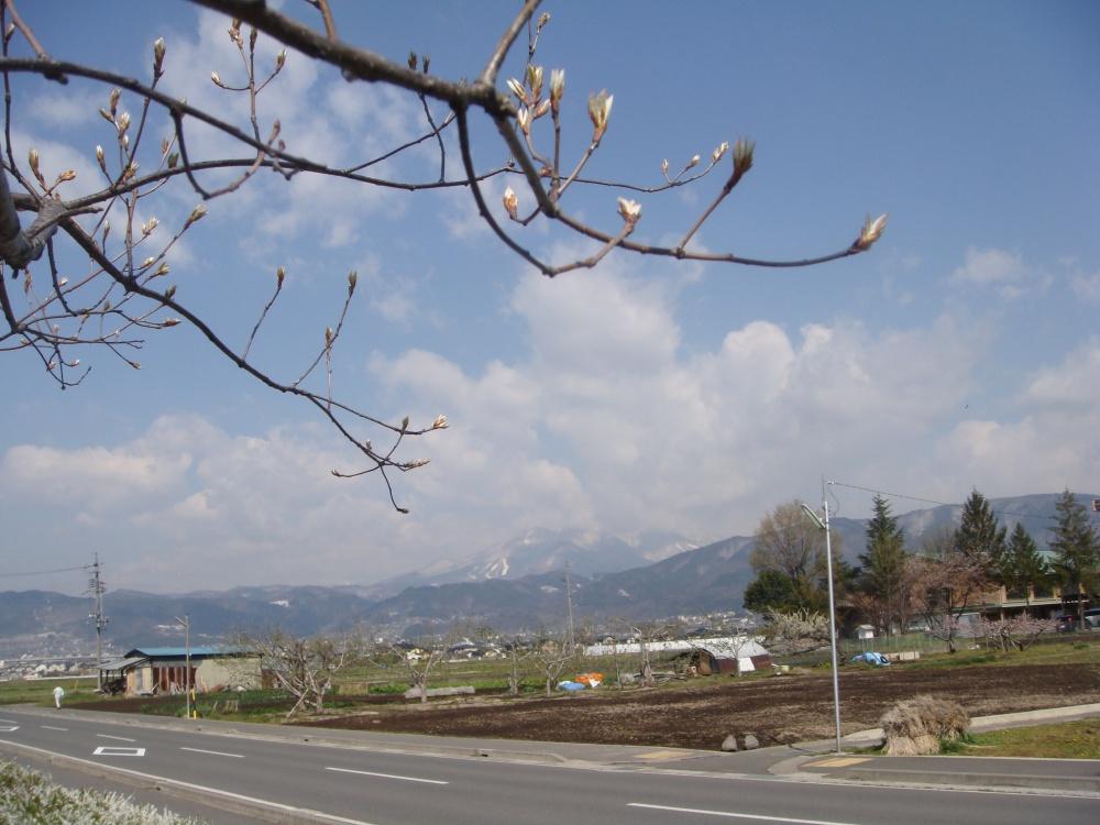 飯縄山にもまた雪が・・・・・・