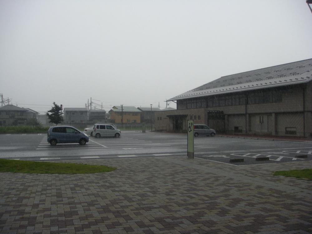 強い雨が降り始めました