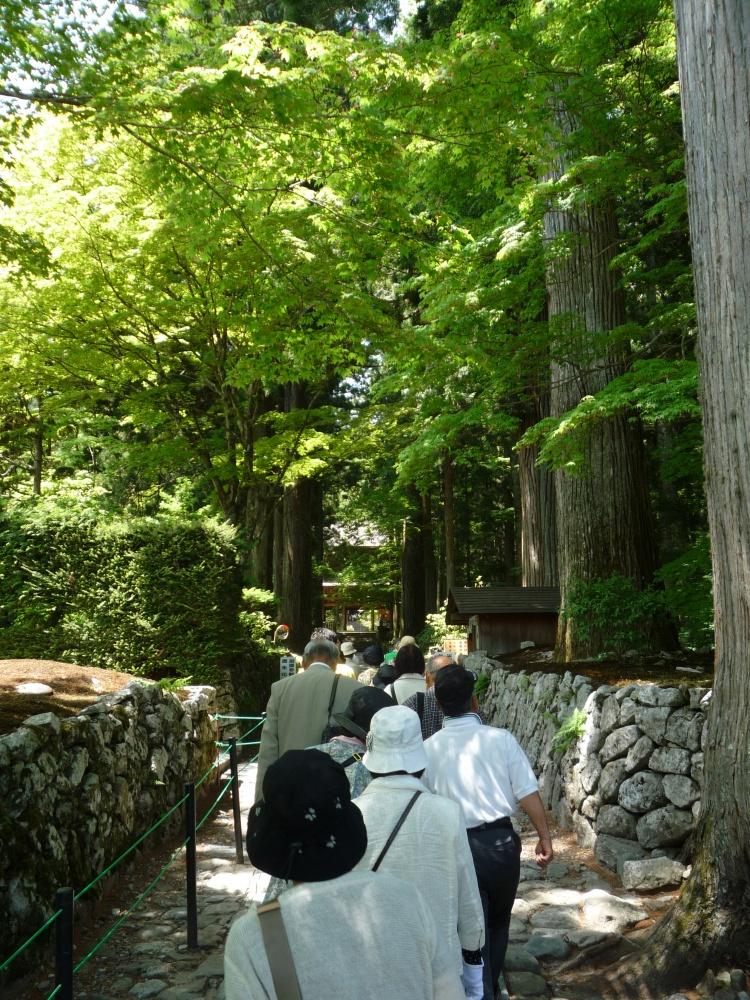 木漏れ日のもれる小道を歩いて