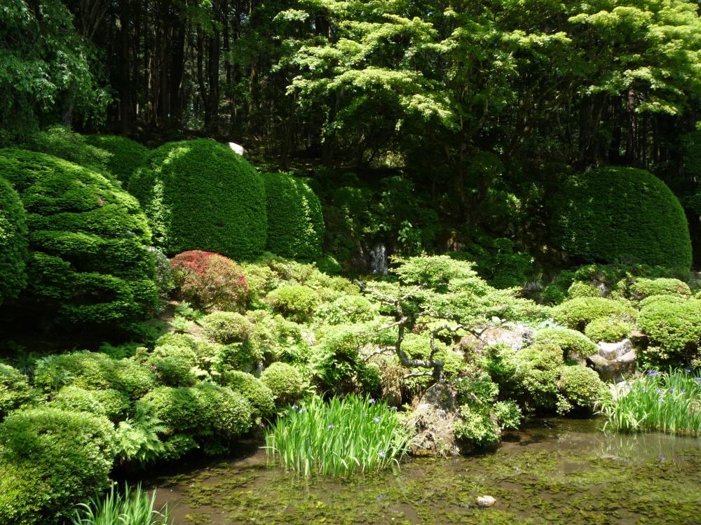緑いっぱいのステキな庭園