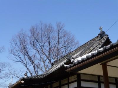 「BEFORE」 屋根の上から雄姿見せている